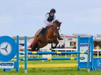 Showjumping at the County Fair. Photo by Dermot Crean