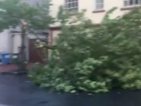 STORM UPDATE: Worst Has Passed As Council Clears Up Storm Ali's Mess