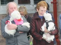 Owners and their pets at the Blessing of the Pets at St John's on Sunday. Photo by Dermot Crean
