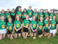 Mercy Mounthawk girls who took part in Thursday's blitz. Photo by Dermot Crean