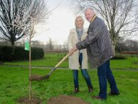 Brendan and Lorna Enright plant a tree in their name in the Town Park to mark their retirement. Photo by Dermot Crean