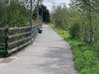 Part of the Lee River Walkway.