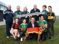 Kerry LGFA News
