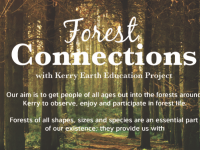 Fun Afternoon Planned For Launch Of 'Forest Connections' Project