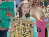 Judith Waugh at a recent protest in Tralee.