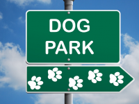 Dog Park Looking Unlikely After Location Proves Elusive