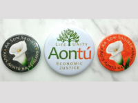Aontú To Donate Part Of Easter Lily Sales To Charities