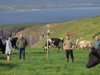 Dingle Creativity and Innovation Hub has been awarded €220,000 EU Horizon 2020 funding to enable West Kerry to participate as a Sustainable Innovation Pilot (SIP) for the next three years. This will see the roll-out of  sensor technology to thirty farms to achieve greater carbon, cost and labour efficiency. Increased carbon efficiency will be achieved by extending the grazing season. At the launch were from left, Deirdre de Bhailís, Manager,  Dingle Creativity and Innovation Hub, Dingle Farm Ambassadors, Dinny Galvin, Lispole,  Ronan Sugrue, Baile an Ghoilín, Dingle, Co Kerry, on whose land the technology was launched, and Michael Kelliher, Dingle Peninsula. Photo: Valerie O'Sullivan/ FREE PIC**
