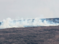 Cllr Calls For Rewards For Information Leading To Illegal Gorse Fires Prosecutions