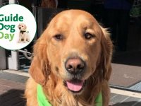 Tralee Branch Members Of Irish Guide Dogs Take Part In May Fundraiser