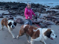 Mary McCaffrey with her dogs Spencer and Eevie.